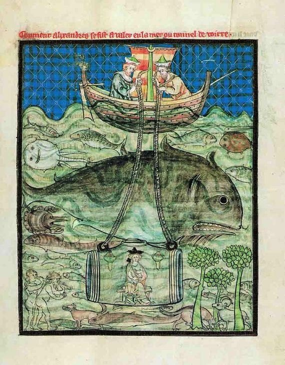 1130 El buceo de Alejandro