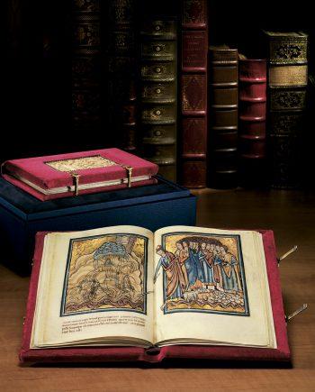 biblia oxford vert web 2